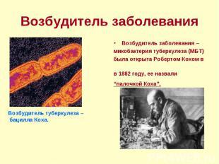 Возбудитель заболевания – Возбудитель заболевания – микобактерия туберкулеза (МБ