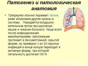 Туберкулёз обычно поражает лёгкие, реже затрагивая другие органы и системы. Пере