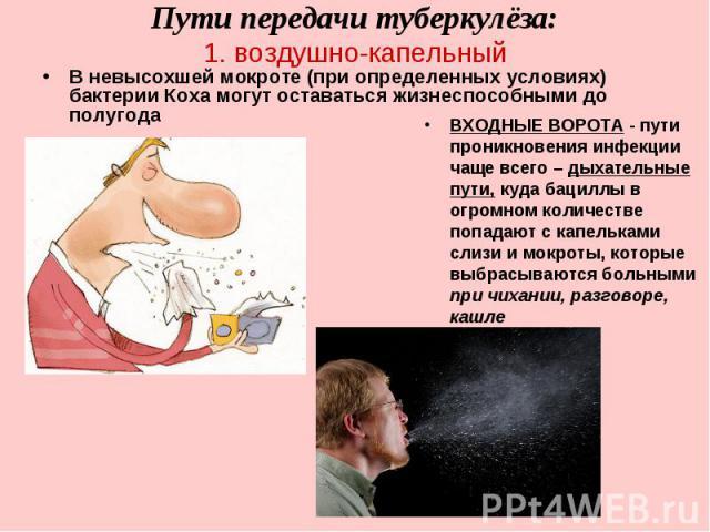 ВХОДНЫЕ ВОРОТА - пути проникновения инфекции чаще всего – дыхательные пути, куда бациллы в огромном количестве попадают с капельками слизи и мокроты, которые выбрасываются больными при чихании, разговоре, кашле ВХОДНЫЕ ВОРОТА - пути проникновения ин…