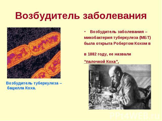 """Возбудитель заболевания – Возбудитель заболевания – микобактерия туберкулеза (МБТ) была открыта Робертом Кохом в в 1882 году, ее назвали """"палочкой Коха"""","""