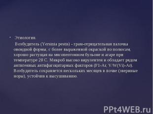 Этиология. Этиология. Возбудитель (Yersinia pestis) - грам-отрицательная палочка
