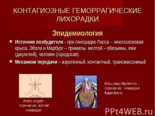 КОНТАГИОЗНЫЕ ГЕМОРРАГИЧЕСКИЕ ЛИХОРАДКИ Эпидемиология Источник возбудителя - при