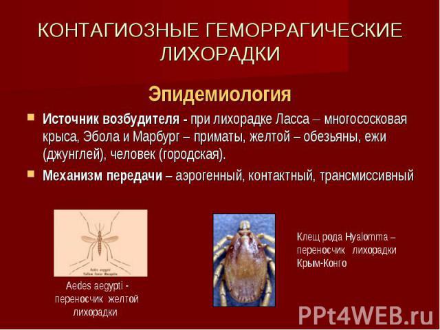КОНТАГИОЗНЫЕ ГЕМОРРАГИЧЕСКИЕ ЛИХОРАДКИ Эпидемиология Источник возбудителя - при лихорадке Ласса многососковая крыса, Эбола и Марбург – приматы, желтой – обезьяны, ежи (джунглей), человек (городская). Механизм передачи – аэрогенный, контактный, транс…