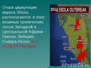 Очаги циркуляции вируса Эбола располагаются в зоне влажных тропических лесов Зап