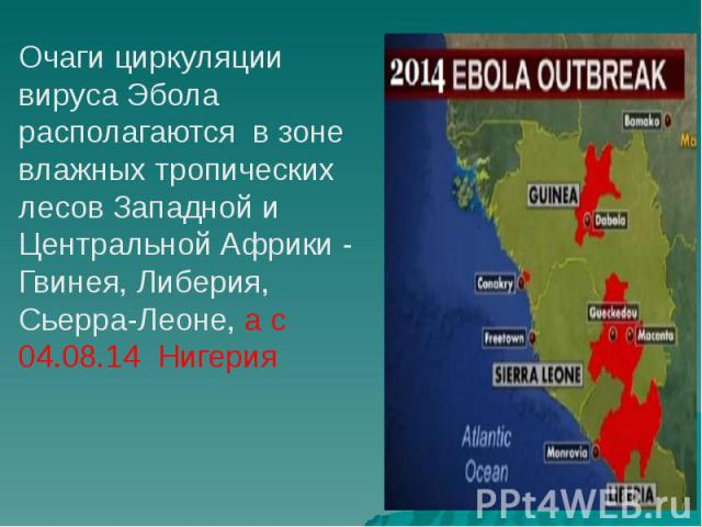 Очаги циркуляции вируса Эбола располагаются в зоне влажных тропических лесов Западной и Центральной Африки - Гвинея, Либерия, Сьерра-Леоне, а с 04.08.14 Нигерия Очаги циркуляции вируса Эбола располагаются в зоне влажных тропических лесов Западной и …