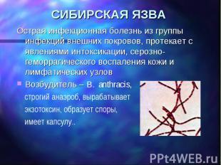 СИБИРСКАЯ ЯЗВА Острая инфекционная болезнь из группы инфекций внешних покровов,