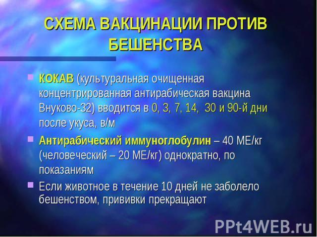 СХЕМА ВАКЦИНАЦИИ ПРОТИВ БЕШЕНСТВА КОКАВ (культуральная очищенная концентрированная антирабическая вакцина Внуково-32) вводится в 0, 3, 7, 14, 30 и 90-й дни после укуса, в/м Антирабический иммуноглобулин – 40 МЕ/кг (человеческий – 20 МЕ/кг) однократн…