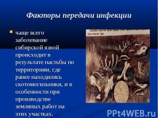 чаще всего заболевание сибирской язвой происходит в результате пастьбы по террит