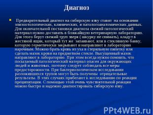 Предварительный диагноз на сибирскую язву ставят на основании эпизоотологических
