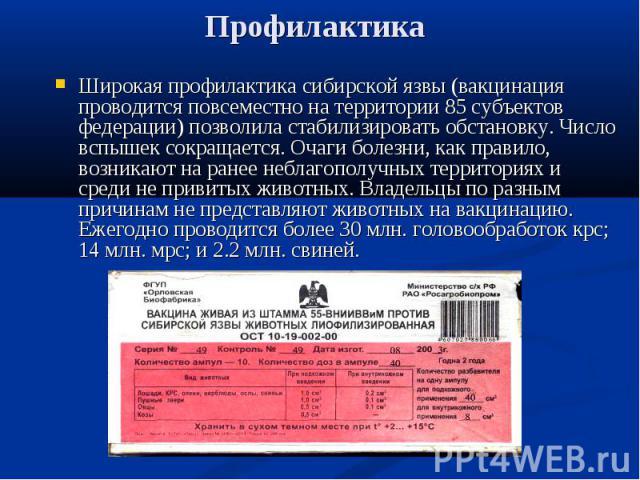 Широкая профилактика сибирской язвы (вакцинация проводится повсеместно на территории 85 субъектов федерации) позволила стабилизировать обстановку. Число вспышек сокращается. Очаги болезни, как правило, возникают на ранее неблагополучных территориях …