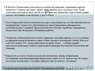 В Москве и Подмосковье резко возросло количество животных, заражённых вирусом бе