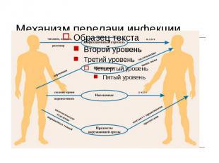Механизм передачи инфекции