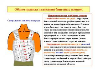 Общие правила наложения бинтовых повязок Повязки на грудь и область живота Спира
