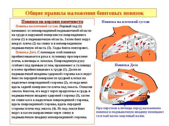 Общие правила наложения бинтовых повязок Повязки на верхние конечности Повязка на плечевой сустав. Первый ход (1) начинают от неповрежденной подмышечной области на груди и наружной поверхности поврежденного плеча (1) в подмышечную область. Затем бин…