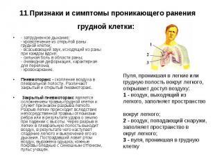 11.Признаки и симптомы проникающего ранения грудной клетки: - затрудненное дыхан