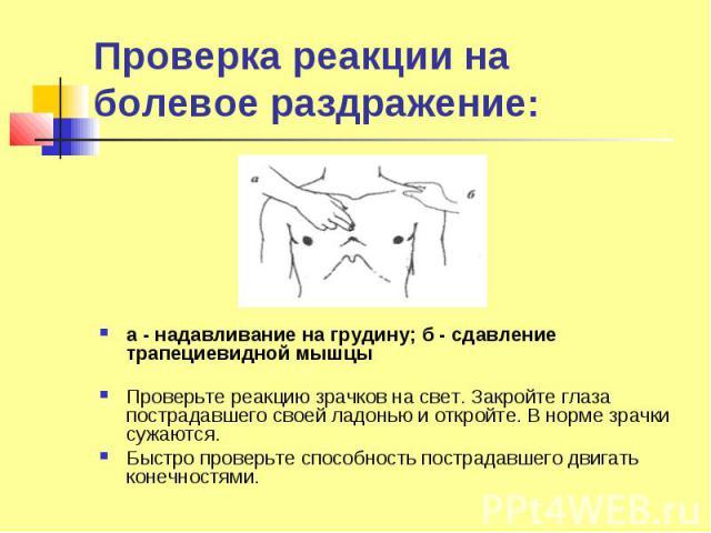 Проверка реакции на болевое раздражение: а - надавливание на грудину; б - сдавление трапециевидной мышцы Проверьте реакцию зрачков на свет. Закройте глаза пострадавшего своей ладонью и откройте. В норме зрачки сужаются. Быстро проверьте способность …