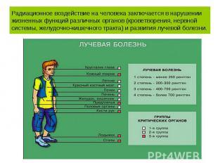 Радиационное воздействие на человека заключается в нарушении жизненных функций р