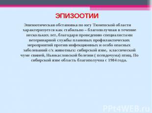 Эпизоотическая обстановка по югу Тюменской области характеризуется как стабильно
