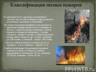 В зависимости от характера возгорания и состава леса лесные пожары подразделяютс