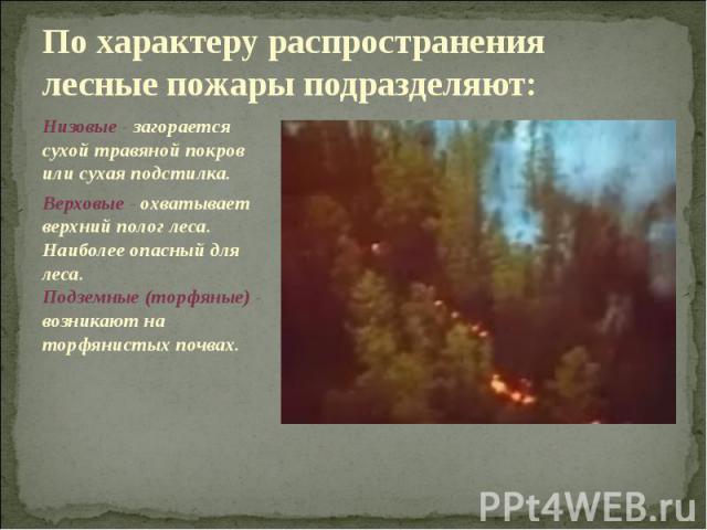 По характеру распространения лесные пожары подразделяют: Низовые - загорается сухой травяной покров или сухая подстилка. Верховые - охватывает верхний полог леса. Наиболее опасный для леса. Подземные (торфяные) - возникают на торфянистых почвах.