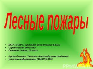 МОУ «СОШ с. Брыковка Духовницкий район МОУ «СОШ с. Брыковка Духовницкий район Са
