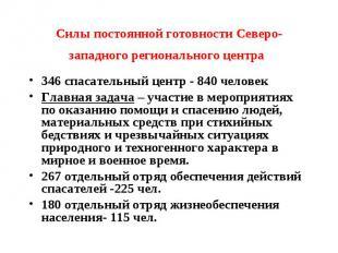 Силы постоянной готовности Северо-западного регионального центра 346 спасательны
