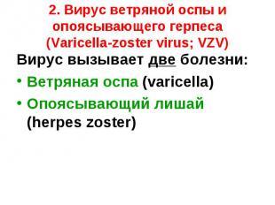 Вирус вызывает две болезни: Вирус вызывает две болезни: Ветряная оспа (varicella