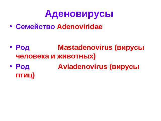 Семейство Adenoviridae Семейство Adenoviridae Род Mastadenovirus (вирусы человека и животных) Род Aviadenovirus (вирусы птиц)