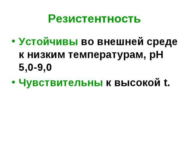 Устойчивы во внешней среде к низким температурам, рН 5,0-9,0 Устойчивы во внешней среде к низким температурам, рН 5,0-9,0 Чувствительны к высокой t.