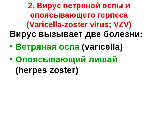 Вирус вызывает две болезни: Вирус вызывает две болезни: Ветряная оспа (varicella) Опоясывающий лишай (herpes zoster)