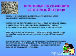 ОСНОВНЫЕ ПОЛОЖЕНИЯ КЛЕТОЧНОЙ ТЕОРИИ клетка - основная единица строения, функцион