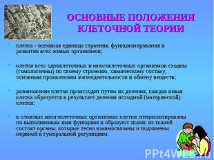 клетка - основная единица строения, функционирования и развития всех живых орган