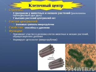 Строение: Строение: 2 Центриоли у животных и низших растений (расположены перпен