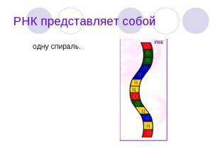 одну спираль. одну спираль.