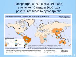 Распространение на земном шаре в течение 40 недели 2010 года различных типов вир