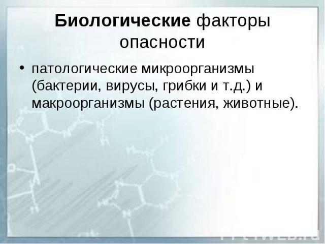 Биологические факторы опасности патологические микроорганизмы (бактерии, вирусы, грибки и т.д.) и макроорганизмы (растения, животные).