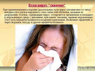 """Если вирус """"схвачен"""" При проникновении в верхние дыхательные пути виру"""