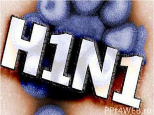 Симптомы свиного гриппа учеловека аналогичны признакам обычного гриппа: Си