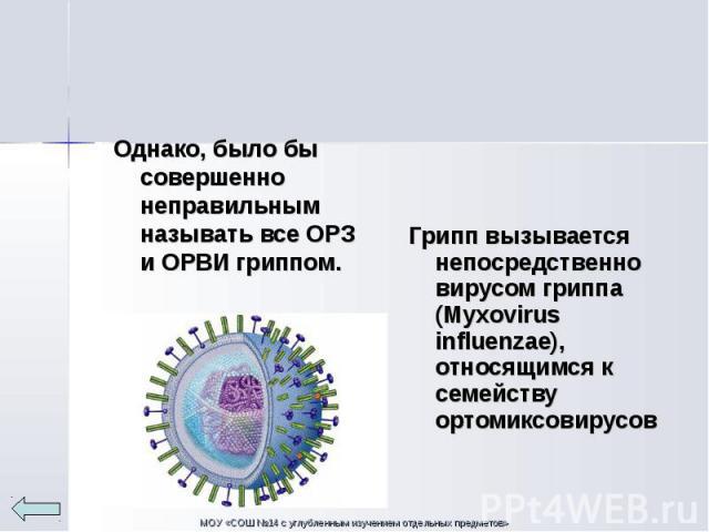 Однако, было бы совершенно неправильным называть все ОРЗ и ОРВИ гриппом. Однако, было бы совершенно неправильным называть все ОРЗ и ОРВИ гриппом.