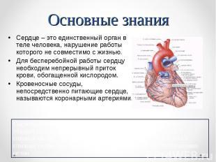 Сердце – это единственный орган в теле человека, нарушение работы которого не со