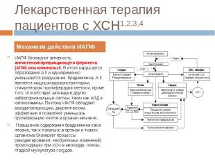 ИАПФ блокируют активность ангиотензинпревращающего фермента (АПФ) или кининазы I