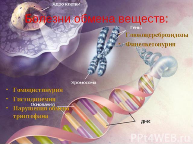 Болезни обмена веществ: Гомоцистинурия Гистидинемия Нарушения обмена триптофана