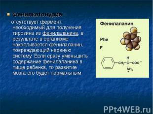 Фенилкетонурия - Фенилкетонурия - отсутствует фермент, необходимый для получения