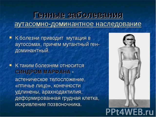 К болезни приводит мутация в аутосомах, причем мутантный ген-доминантный. К болезни приводит мутация в аутосомах, причем мутантный ген-доминантный. К таким болезням относится СИНДРОМ МАРФАНА - астеническое телосложение, «птичье лицо», конечности удл…