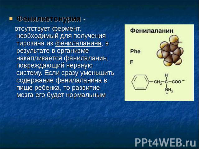 Фенилкетонурия - Фенилкетонурия - отсутствует фермент, необходимый для получения тирозина из фенилаланина, в результате в организме накапливается фенилаланин, повреждающий нервную систему. Если сразу уменьшить содержание фенилаланина в пище ребенка,…