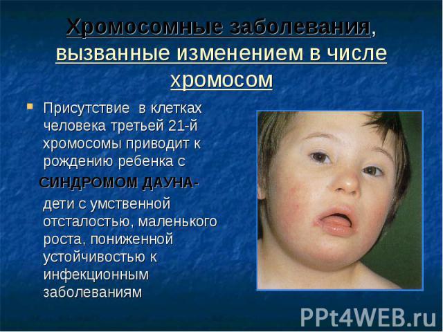 Присутствие в клетках человека третьей 21-й хромосомы приводит к рождению ребенка с Присутствие в клетках человека третьей 21-й хромосомы приводит к рождению ребенка с СИНДРОМОМ ДАУНА- дети с умственной отсталостью, маленького роста, пониженной усто…