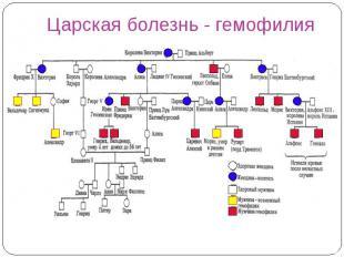 Царская болезнь - гемофилия