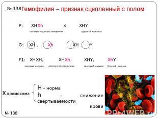 Гемофилия – признак сцепленный с полом Р: ХHХh ⨯ ХHY носительница гена гемофилии