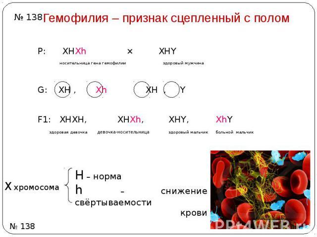 Гемофилия – признак сцепленный с полом Р: ХHХh ⨯ ХHY носительница гена гемофилии здоровый мужчина G: ХH , Хh ХH , Y F1: XHXH, XHXh, XHY, XhY здоровая девочка девочка-носительница здоровый мальчик больной мальчик