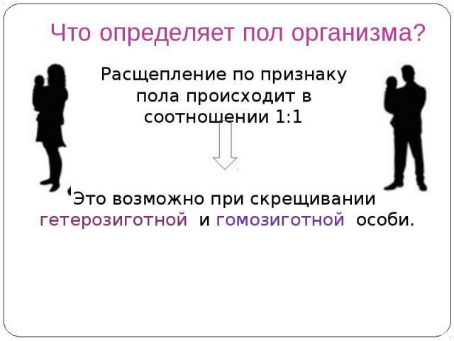 Что определяет пол организма?